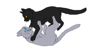 Breezepelt and Jayfeather WIP by purrsians