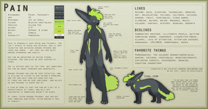 Pain Reference Sheet by Vencentio