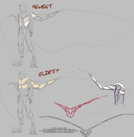 Gethins Wing Anatomy WIP by GreekCeltic