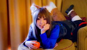 Spice and Wolf II by kaworu0926