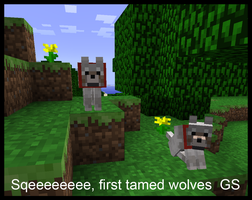 Minecraft wolves tamed by griffsnuff