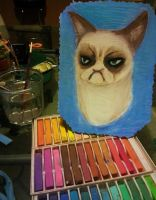 Grumpy Cat in pastel by chatt3rbox