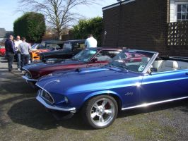car meet DUN COW 5 mustangs by Sceptre63