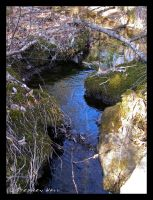 Stream By The Snowmobile Trail by Geayzus