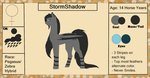 StormShadow {Reference Sheet +Bio} by ScarletsFeed