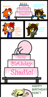 Shadic's Birfday by AbundanceOKatharines