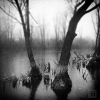 Small Waterscapes Stories I by FilipR8