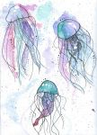 Jellies by EvannaVanyaEliska