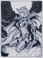 Barda NYCC commish by MichaelDooney