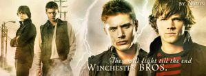 Winchester BROS. (Banner for Timeline) by Nadin7Angel