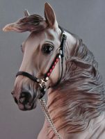 1:9 scale fancy halter by silverdragon76