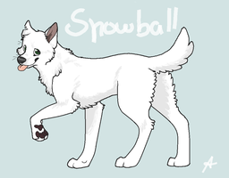 Point Com. Snowball by FourDirtyPaws