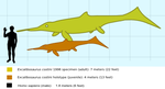 Excalibosaurus to Scale by saintabyssal