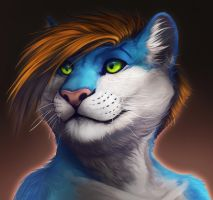 Nipaw-commission- by Rogue-Lgr