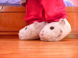 White Tiger Slippers, side by ExileLink