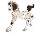 Foal 343 design by hillsveiwrider123