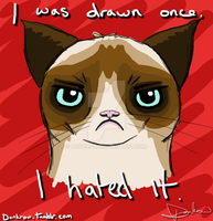 Grumpy cat 2 by DonKrow