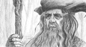 Radagast the brown by LoonaLucy