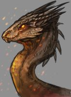 Smaug 2 by AbelPhee