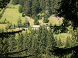Chalet in the pastures by Sweetlylou