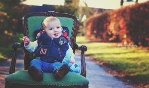 little prince on his chair by Burder