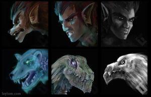DnD Portraits by tomgiest