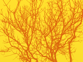 Branches - Orange and Yellow by Emily848