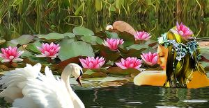 Water Lilly by kongvmax