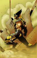 Wolverine Colored by culdesackidz