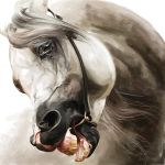 Rejection by QueenOfGoldfishes by Equine-Portraits