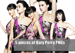 Katy Perry PNG pack by sshakawboomm