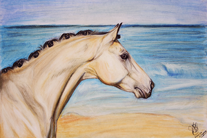 A horse made of gold by Carla-loves