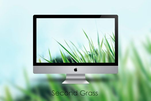Second Grass by Zim2687