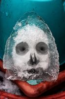 Ice Face One by aegiandyad
