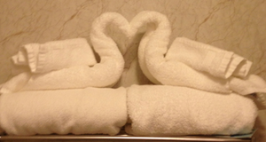 Towel Art by ColbieWhite