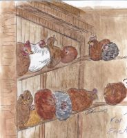 in the hen house by LilyRaine