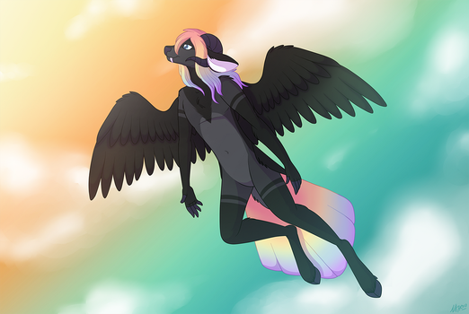 Soaring by NatLeo