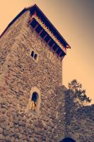Medieval Tower by crazyswisscow