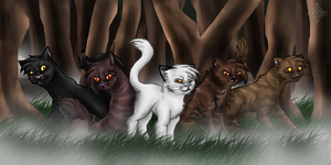 ShadowClan by mmoollyy10
