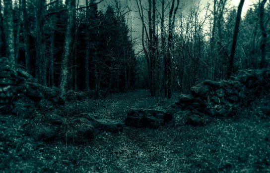 ..stay on path... by Espen-Alexander