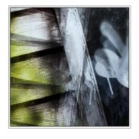 Garden Shed Abstract by rosebud10