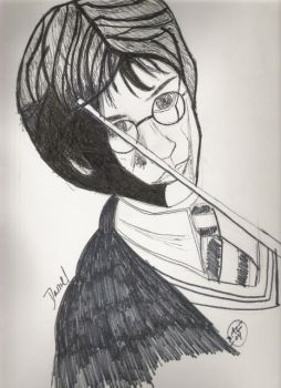 Potter In Shadow by Lucis