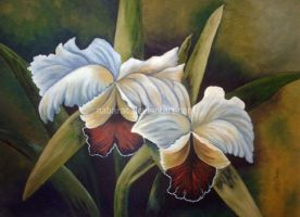 white orchids by nabarac