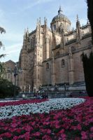 Catedral II by LwltGr
