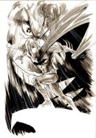 Batman.Joker by Cinar