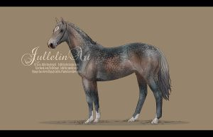 Thoroughbred Auction # 5 ENDED by Jullelin