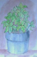 Potted Plant by ATGB3x3