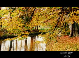 Autumn colours by niwaj