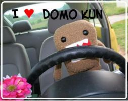 I love DOMO by LeoPaw