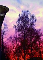 red sky II. by Nicollaos